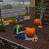 De Sims 3 Jaargetijden