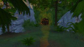 Het bosje waarmee je in het Diepe Woud komt