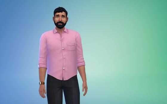 De Sims 4 Aan Het Werk