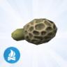 Nepmorieljepaddenstoelen