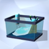 Levende blauwe slak