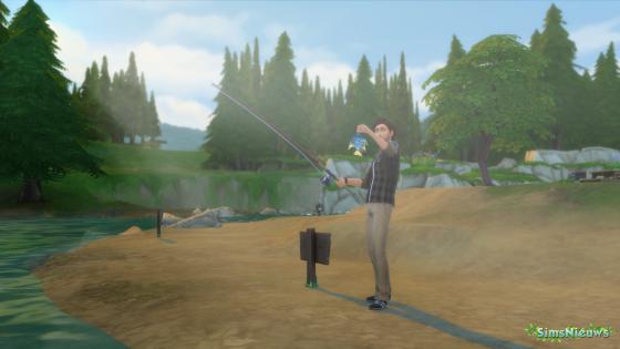 De Sims 4 collecties: Vissen