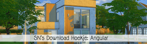 SN's Download Hoekje: Angular