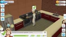 Culinaire carrière