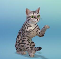 SimGuruEmory's nagemaakte huisdieren in Creëer-een-Huisdier