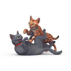 Perfecte huisdier quiz: Actieve kat