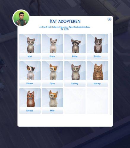 Huisdieren te adoptie uitkiezen