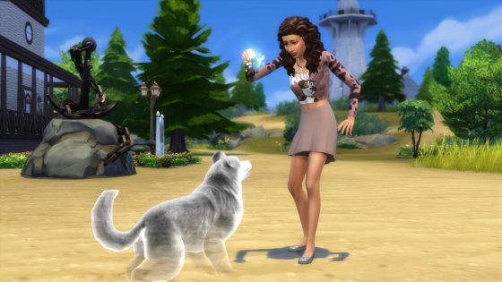 De Sims 4 Honden en Katten gidsen
