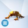 Gouden Juweelkikker
