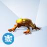 Jonquil Gouden Zonkikker