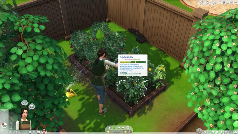 Planten ontwikkelen