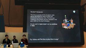 Informatie over De Sims
